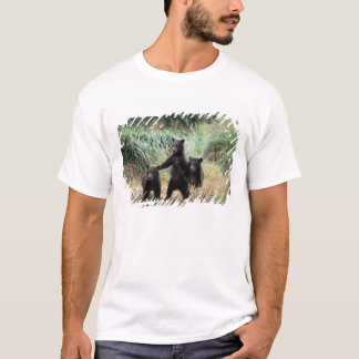Grizzly bear, brown bear,  cubs in tall grasses, T-Shirt