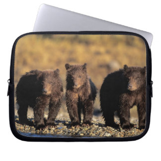 Grizzly bear, brown bear, cubs, Katmai National Laptop Sleeve