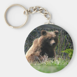 Grizzly Bear Cub Basic Round Button Key Ring