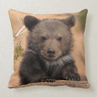 Grizzly Bear Cub Cushion