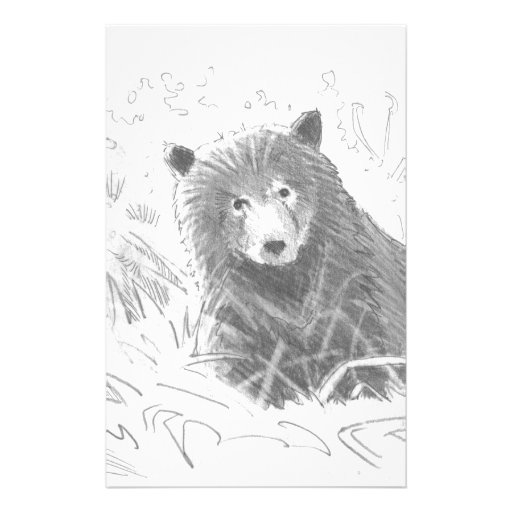 how to draw a grizzly bear cub