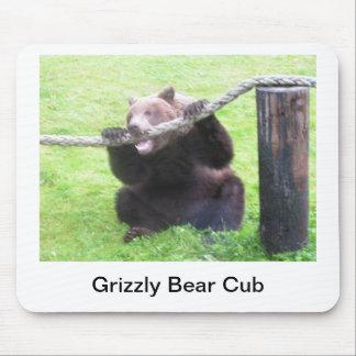 Grizzly Bear Cub Mousepad
