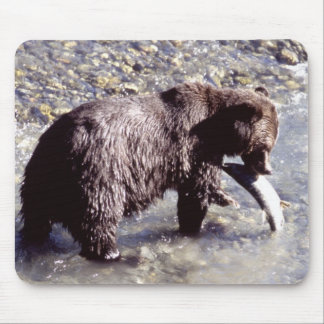 Grizzly Bear Eating a Salmon Mouse Pads