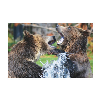 Grizzly bear fight gallery wrap canvas