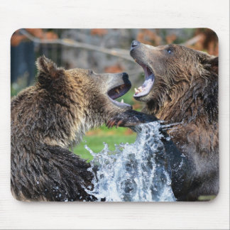 Grizzly bear fight mouse pads