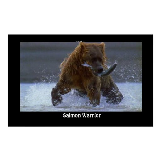 GRIZZLY BEAR Fishing for Salmon Poster