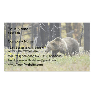 Grizzly Bear in Field at Yellowstone National Park Business Card Template