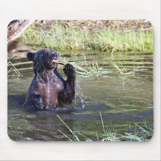 Grizzly Bear in the Water Mousepads