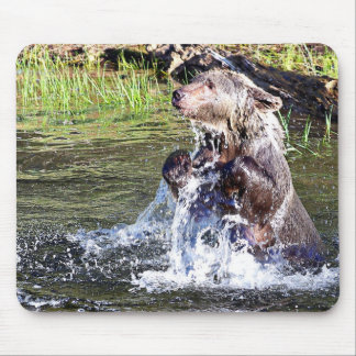 Grizzly Bear in the Water Mousepad