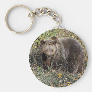 Grizzly Bear Key Ring
