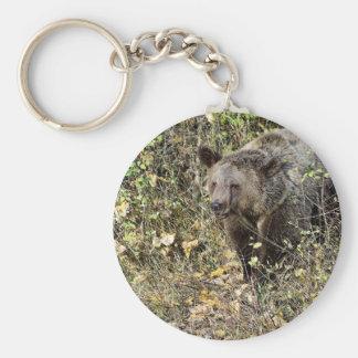 Grizzly Bear Keychain