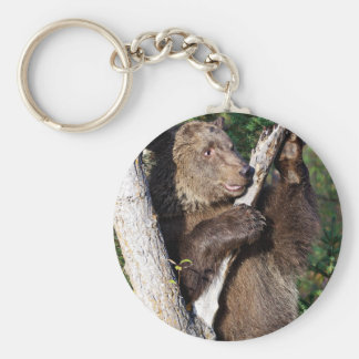 Grizzly Bear leaning on a Tree Keychain