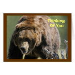 Grizzly Bear, Military Encouragement Greeting Cards