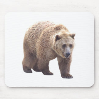 Grizzly Bear Mouse Mat
