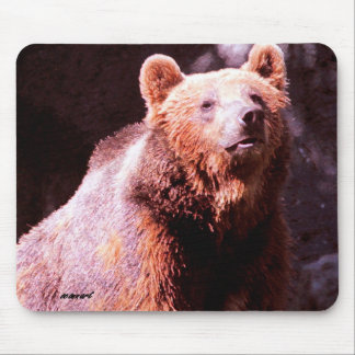grizzly bear mouse mats