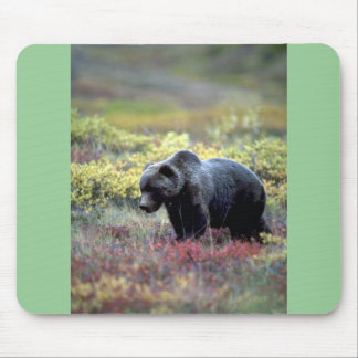 Grizzly Bear Mouse Pads