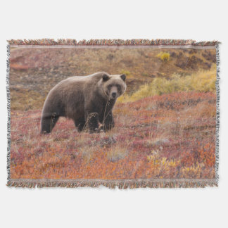 Grizzly Bear Moves Through Autumn Colors In Alaska Throw Blanket