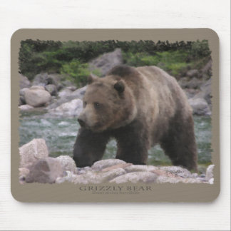 Grizzly Bear - Pastels Mouse Pad