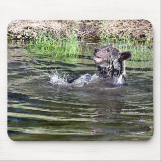 Grizzly Bear playing in the water Mousepad