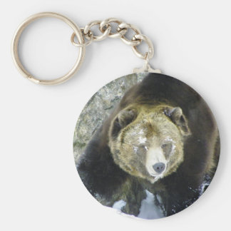 Grizzly Bear Portrait In Snow Basic Round Button Key Ring