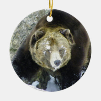 Grizzly Bear Portrait In Snow Christmas Ornament