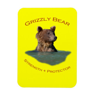 Grizzly Bear Rectangular Photo Magnet