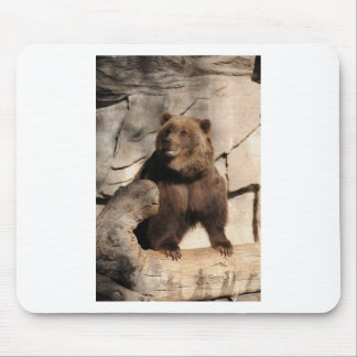 Grizzly Bear Sow Mousepads