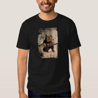 Grizzly Bear Sow T-shirts