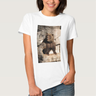 Grizzly Bear Sow Tee Shirts