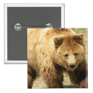 Grizzly Bear Square Button