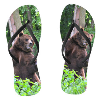 Grizzly Bear Standing Tall In The Woods Flip Flops