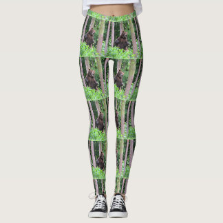 Grizzly Bear Standing Tall In The Woods Leggings