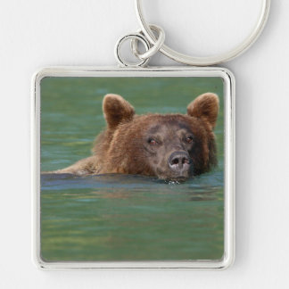 Grizzly Bear Swimming Key Chain