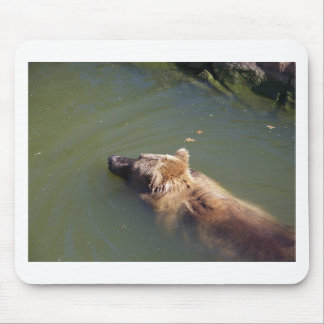 Grizzly Bear Swimming Mousepads