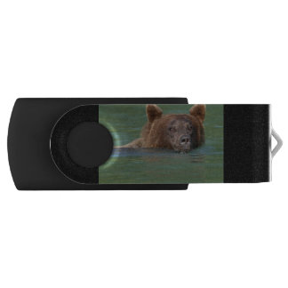 Grizzly Bear Swimming USB Flash Drive