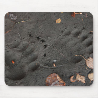 Grizzly Bear Tracks with autmn Leaves Mouse Pad