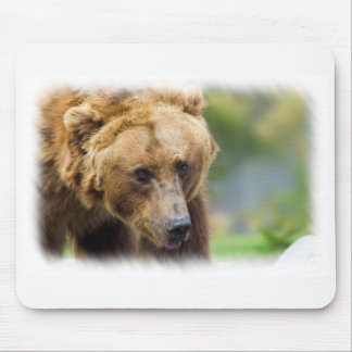 Grizzly Bear White Border Mouse Mat