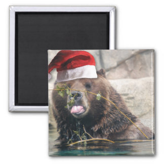 Grizzly Bear with Santa Hat Square Magnet