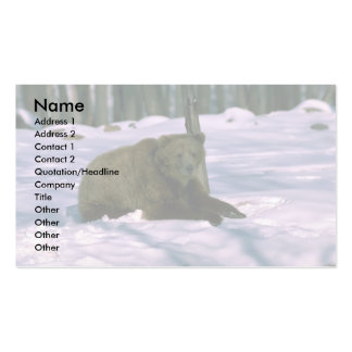 Grizzly Bear-young adult in snowy woods Business Card Template