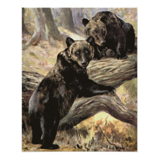 Grizzly Bears by CE Swan, Vintage Wild Animals Poster