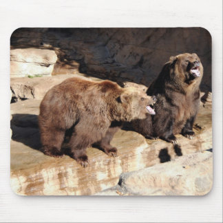 Grizzly Bears Mousepads