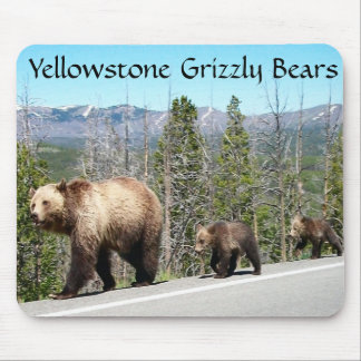Grizzly Bears of Yellowstone Mouse Pads