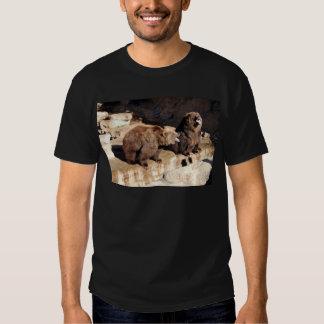 Grizzly Bears Tshirt