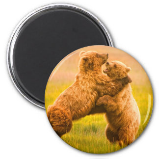 Grizzly Bears Wrestling 6 Cm Round Magnet