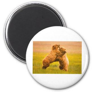 Grizzly Bears Wrestling Magnets