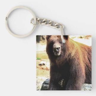 Grizzly Brown Bear Wildlife Photo Key Chain
