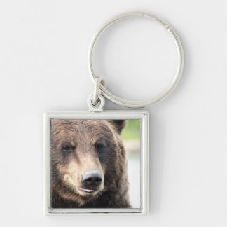 Grizzly Face Square Key Chain