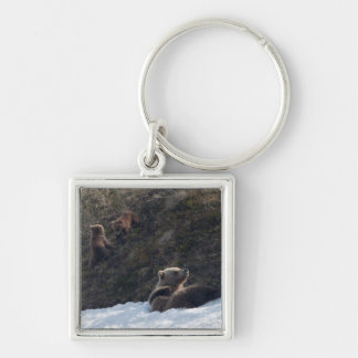 Grizzly Family Scene Silver-Colored Square Key Ring