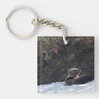 Grizzly Family Scene Single-Sided Square Acrylic Key Ring