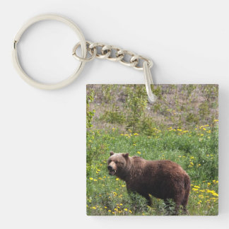 Grizzly in the Dandelions Single-Sided Square Acrylic Key Ring